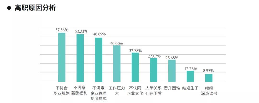 上海辛巴会展公司背景_上海背景调查公司_家庭教育问题调查背景
